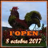 Vignette open 2017